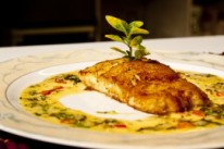 Saute fillet of Fresh Hake